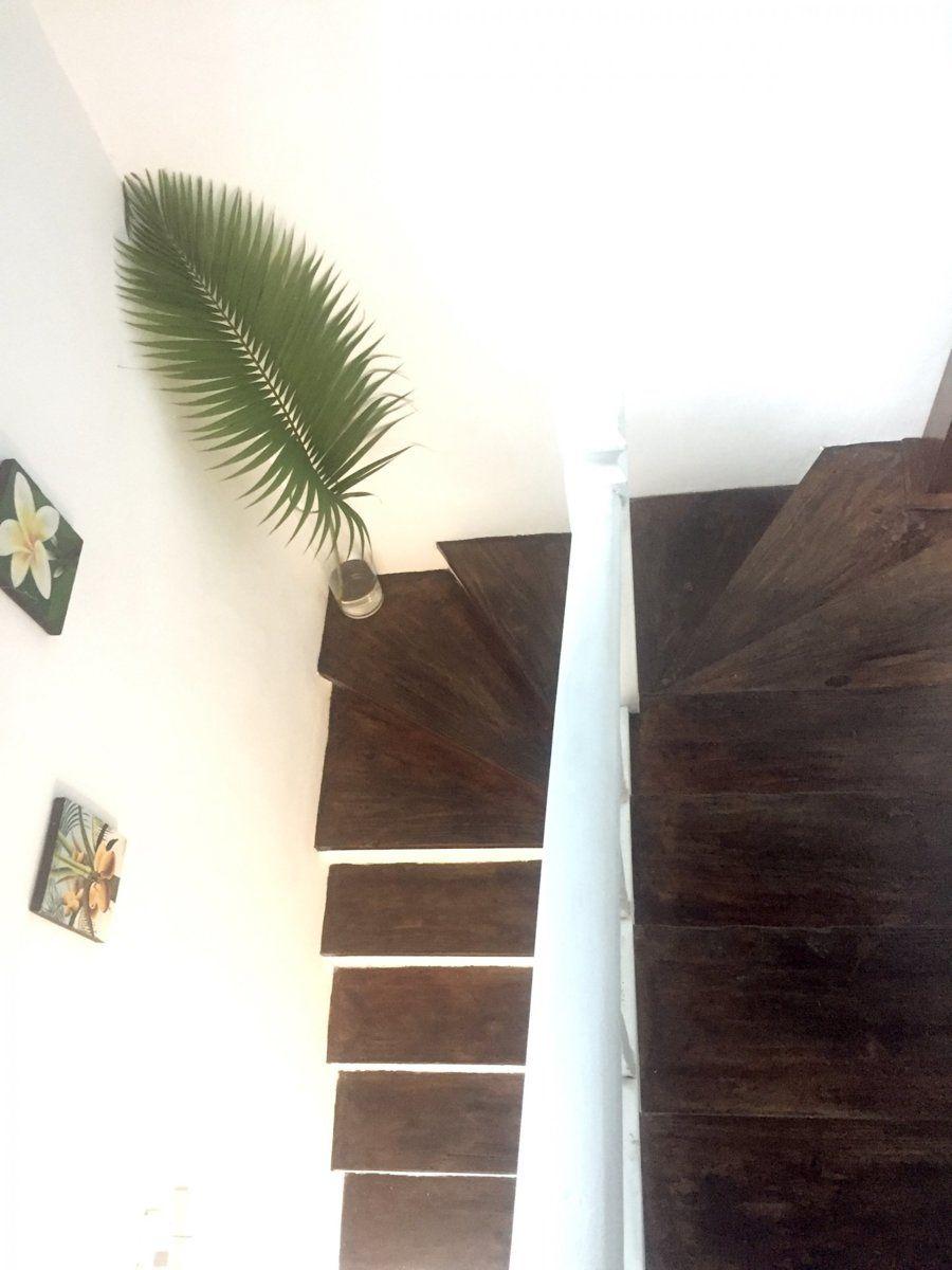 Appartement à louer 5 100m2 à Ile Maurice vignette-14