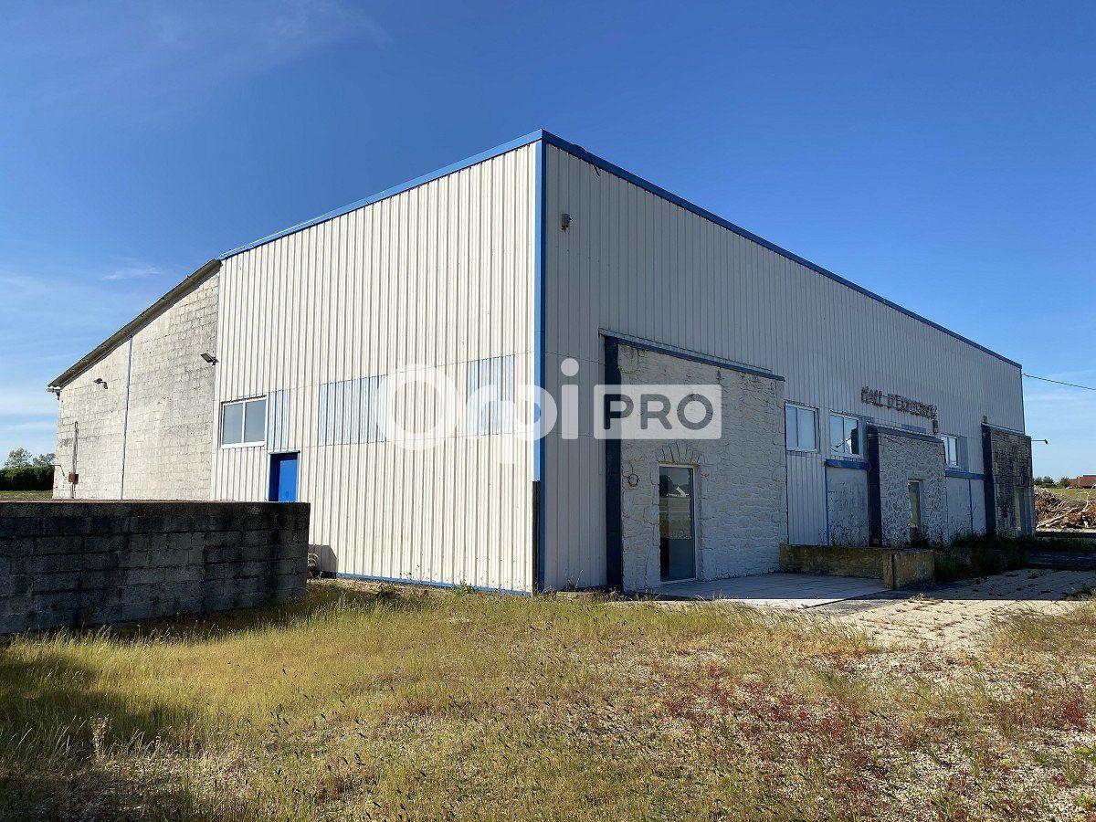 Local d'activité à vendre 0 600m2 à Vergetot vignette-4