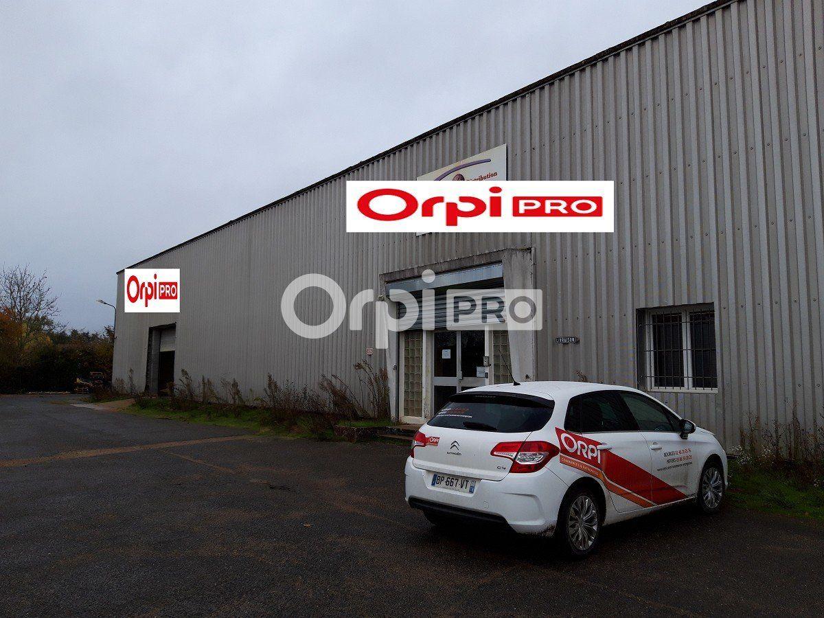 Entrepôt à vendre 0 13700m2 à Nevers vignette-2
