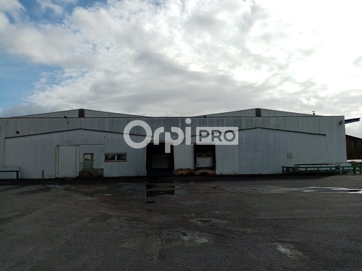 Entrepôt à vendre 0 4000m2 à Saint-Éloi vignette-4