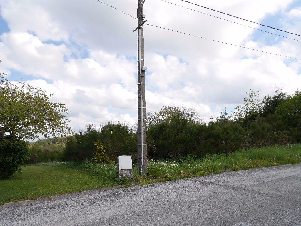 Terrain à vendre 0 1575m2 à Saint-Gervais-d'Auvergne vignette-6