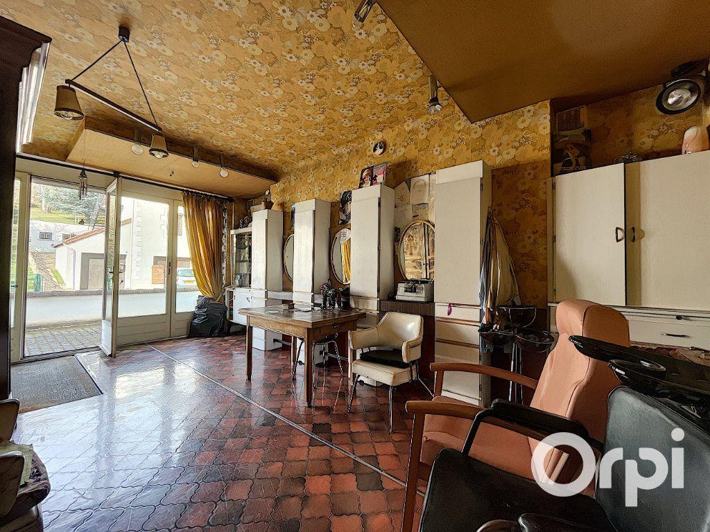 Maison à vendre 8 176.5m2 à Saint-Éloy-les-Mines vignette-12