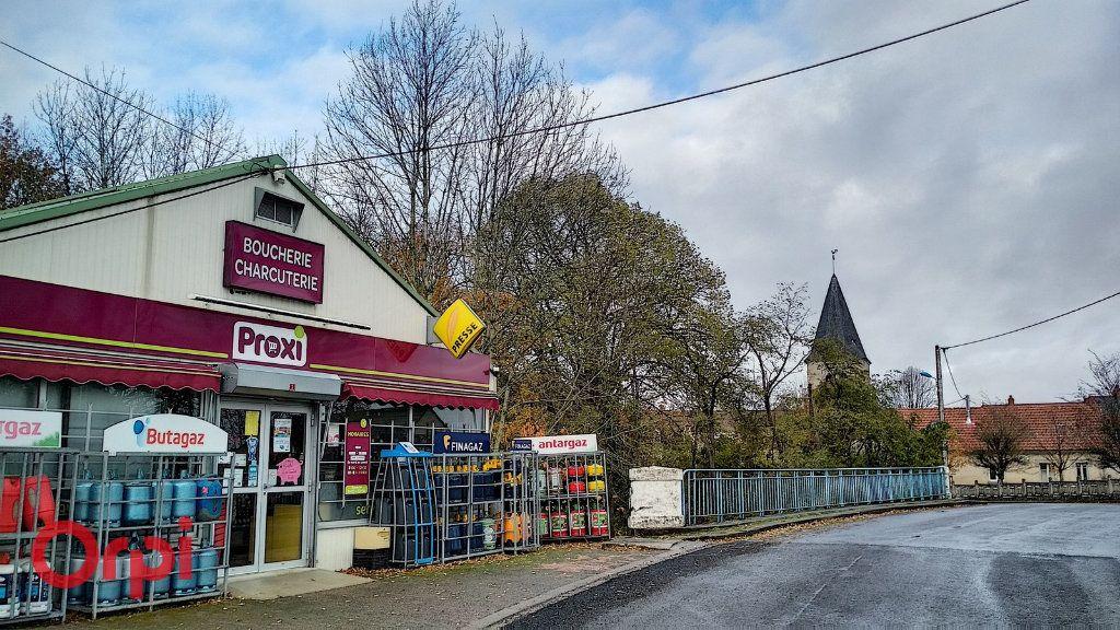 Maison à vendre 4 100m2 à Louroux-de-Bouble vignette-16