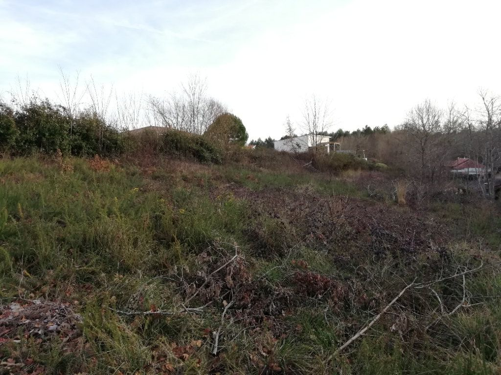 Terrain à vendre 0 1467m2 à Rion-des-Landes vignette-1