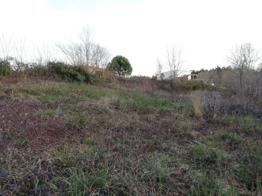 Terrain à vendre 0 1467m2 à Rion-des-Landes vignette-3