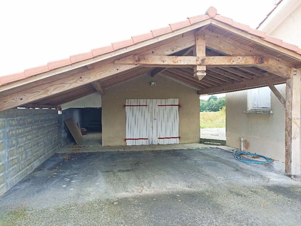 Maison à vendre 7 167m2 à Saint-Sever vignette-7