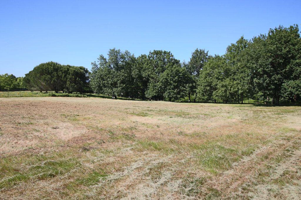 Terrain à vendre 0 1700m2 à Montauban vignette-3