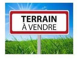 Terrain à vendre 0 1620m2 à Bray-en-Val vignette-1