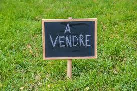 Terrain à vendre 0 915m2 à Bacquepuis vignette-1