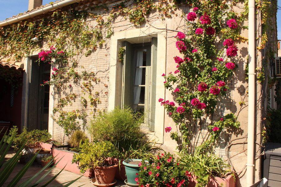 Maison à vendre 4 165m2 à Marseillan vignette-1