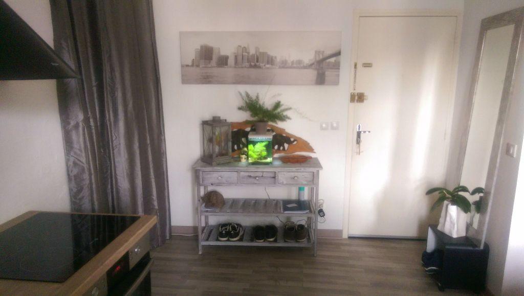 Appartement à louer 1 30.18m2 à Istres vignette-4