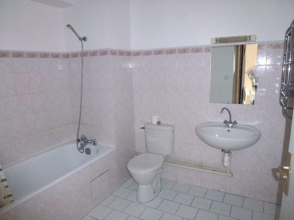 Appartement à louer 2 46.88m2 à Limoges vignette-5