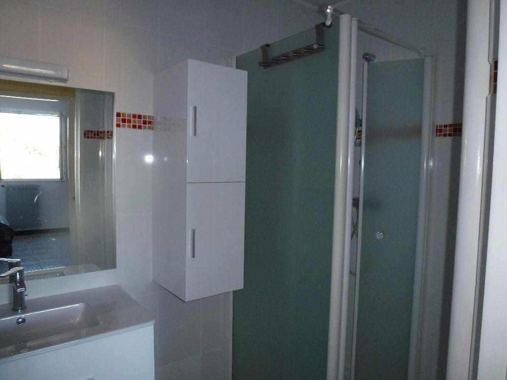 Appartement à louer 2 45.66m2 à Limoges vignette-5