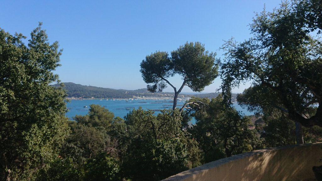 Appartement à vendre 1 19m2 à La Seyne-sur-Mer vignette-1
