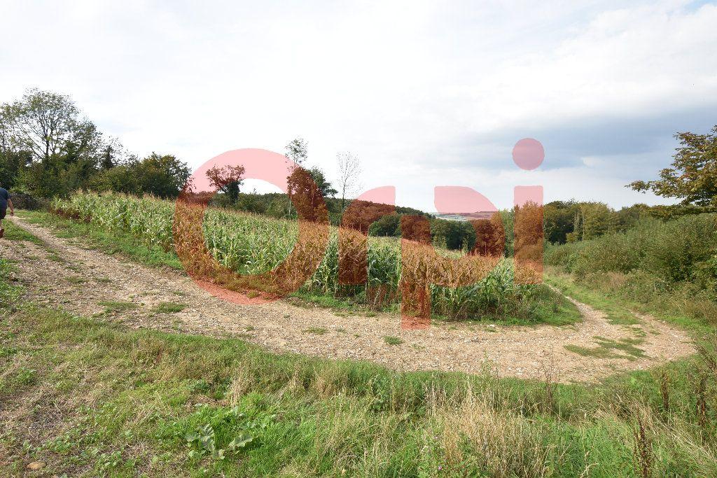 Terrain à vendre 0 100000m2 à Bonningues-lès-Ardres vignette-4