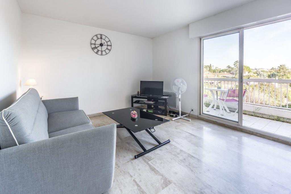 Appartement à louer 1 24.08m2 à Mandelieu-la-Napoule vignette-4