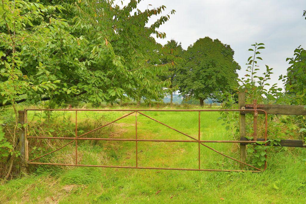 Maison à vendre 6 166m2 à Gournay-en-Bray vignette-16