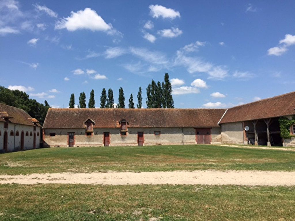 Maison à vendre 6 190m2 à Pruniers-en-Sologne vignette-3