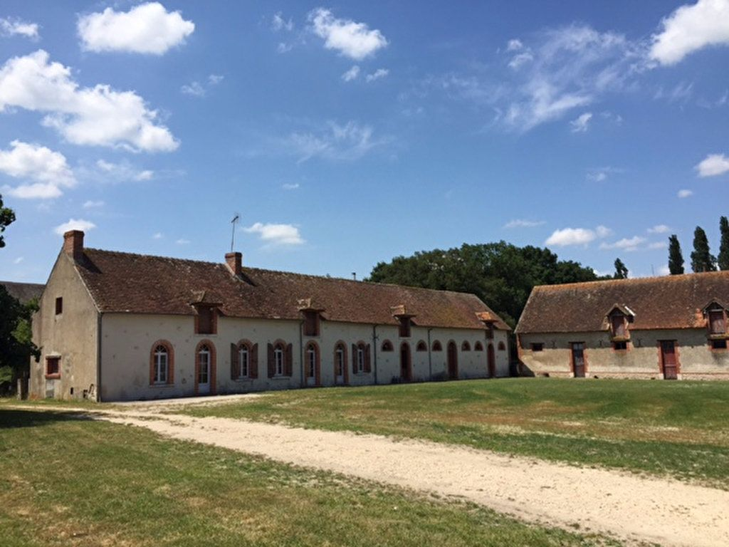 Maison à vendre 6 190m2 à Pruniers-en-Sologne vignette-4