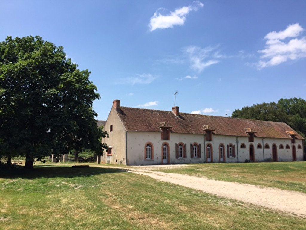 Maison à vendre 6 190m2 à Pruniers-en-Sologne vignette-8
