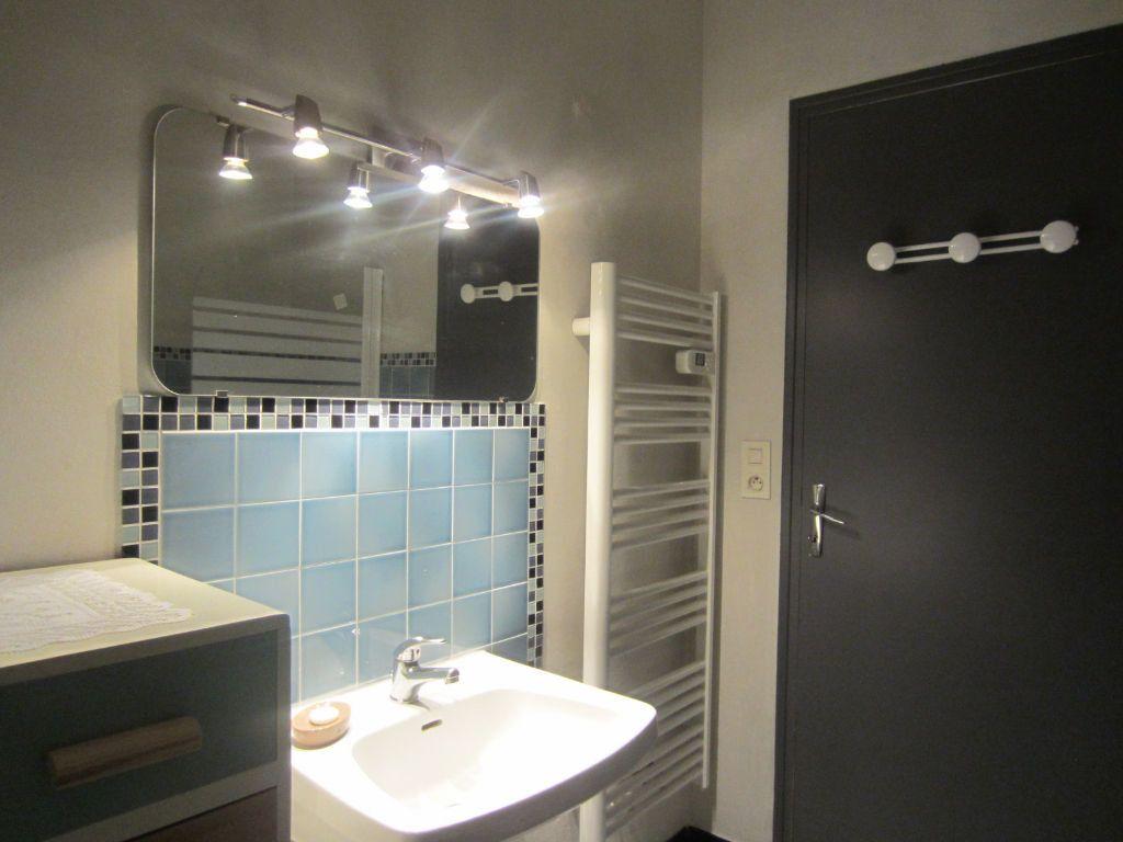 Appartement à vendre 1 32.98m2 à Selles-sur-Cher vignette-10
