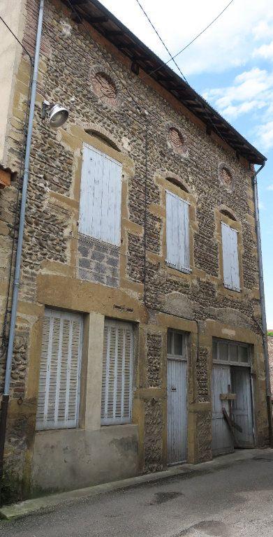 Maison à vendre 4 75m2 à Beaurepaire vignette-1