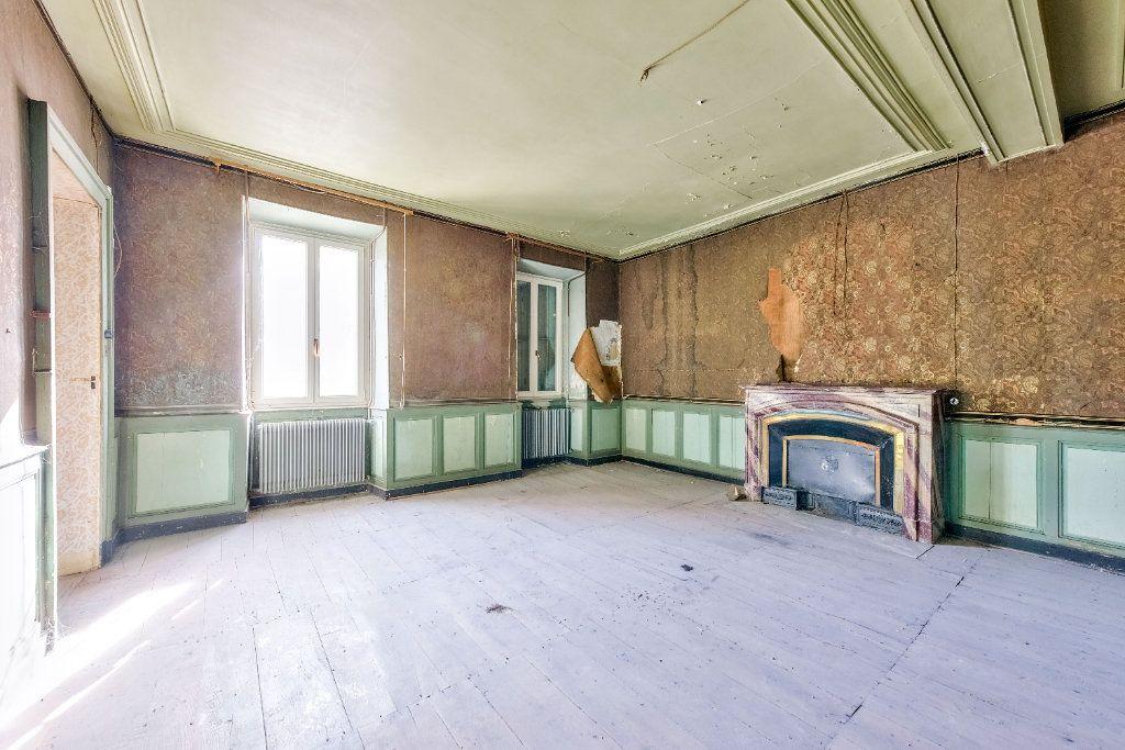 Maison à vendre 15 800m2 à Beaurepaire vignette-5