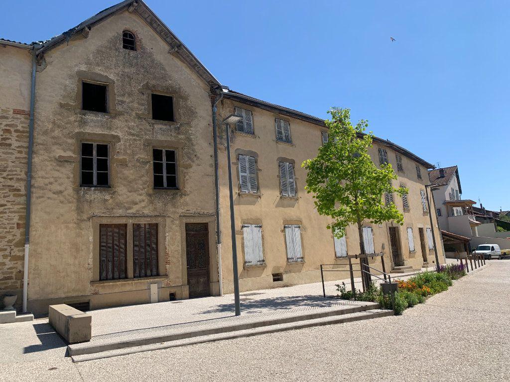 Maison à vendre 4 100m2 à Revel-Tourdan vignette-2