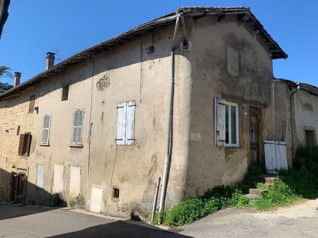 Maison à vendre 3 80m2 à Revel-Tourdan vignette-1