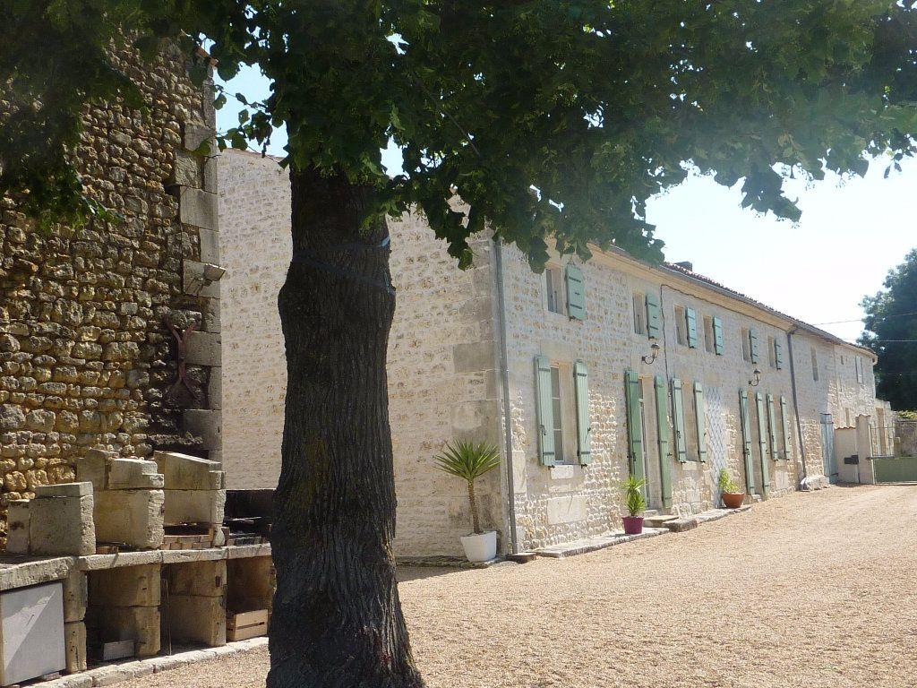 Maison à vendre 9 290m2 à Saint-Savinien vignette-2