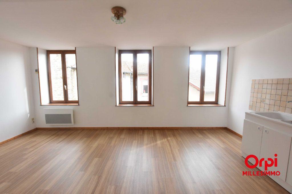 Appartement à louer 3 51.2m2 à Saint-Martin-en-Haut vignette-2