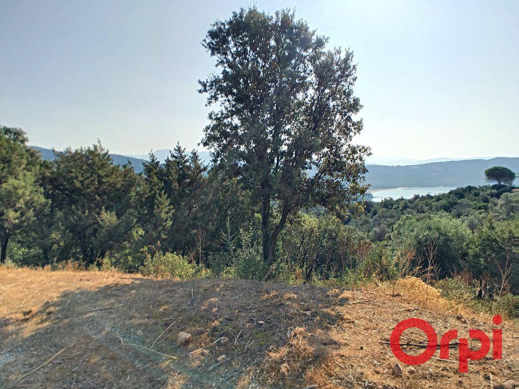Terrain à vendre 0 9100m2 à Coti-Chiavari vignette-2