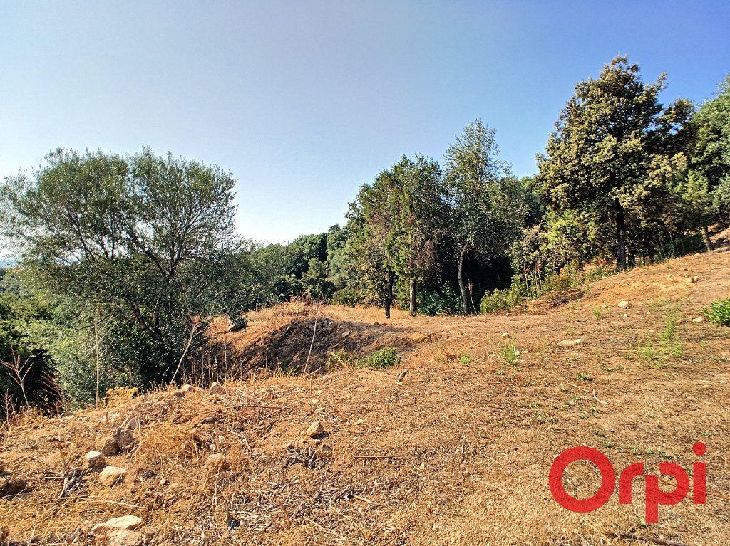 Terrain à vendre 0 9100m2 à Coti-Chiavari vignette-4