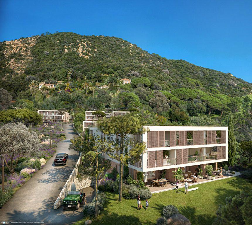 Appartement à vendre 4 134.61m2 à Ajaccio vignette-8