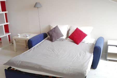 Appartement à louer 1 19m2 à Cannes vignette-3