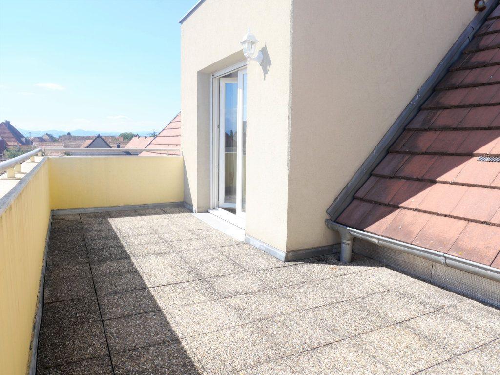 Appartement à louer 3 63.43m2 à Biesheim vignette-4