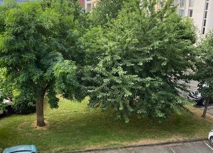 Appartement à vendre 5 100.82m2 à Toulouse vignette-2