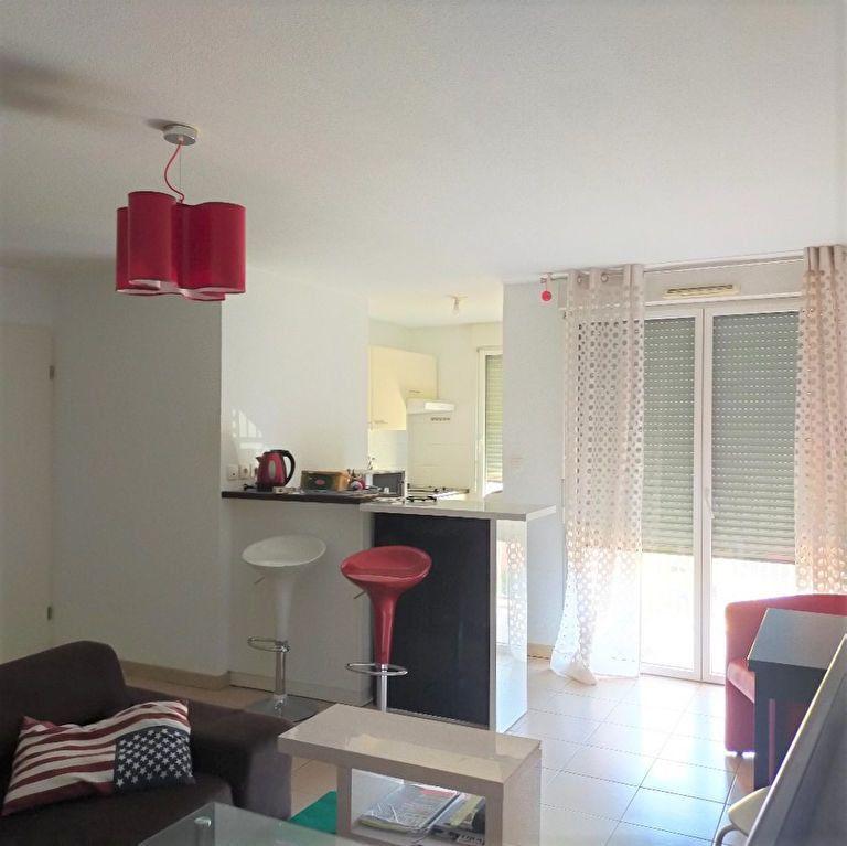 Appartement à vendre 2 50m2 à Grenade vignette-2