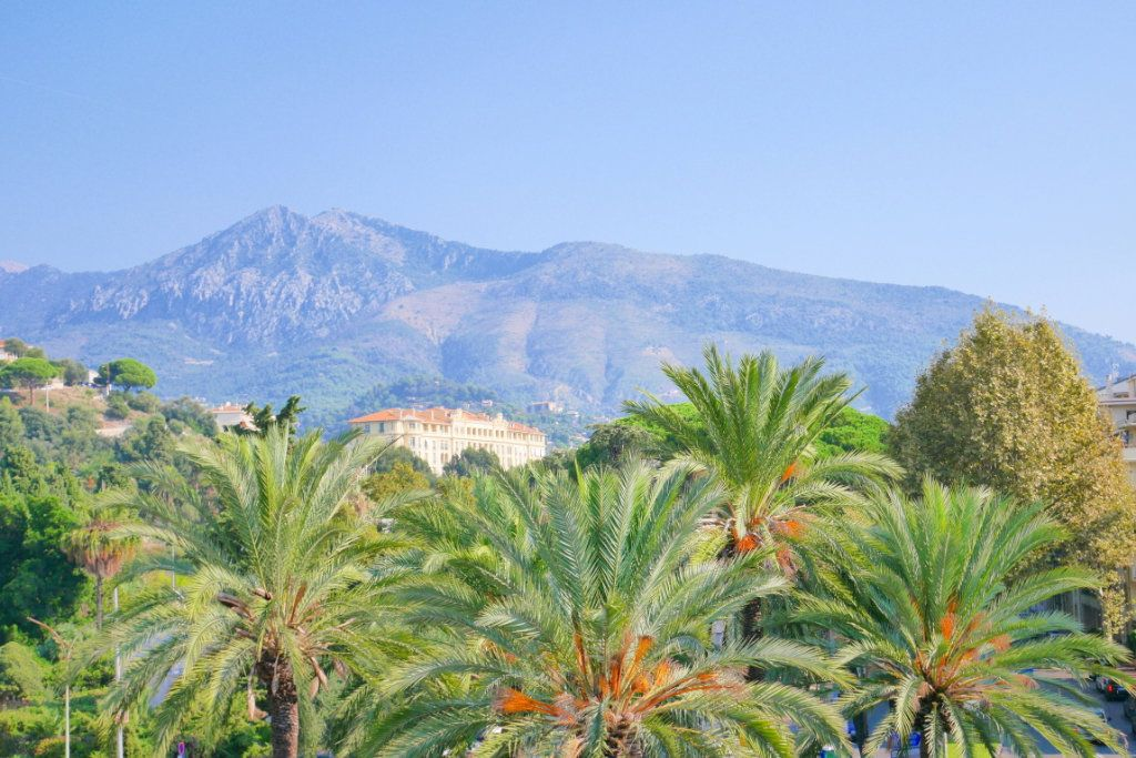 Appartement à vendre 2 51.29m2 à Roquebrune-Cap-Martin vignette-9
