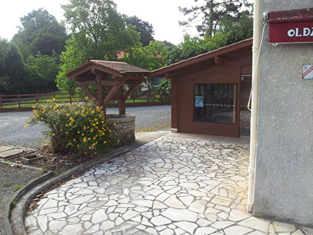 Maison à vendre 9 161.58m2 à Saint-André-de-Seignanx vignette-4