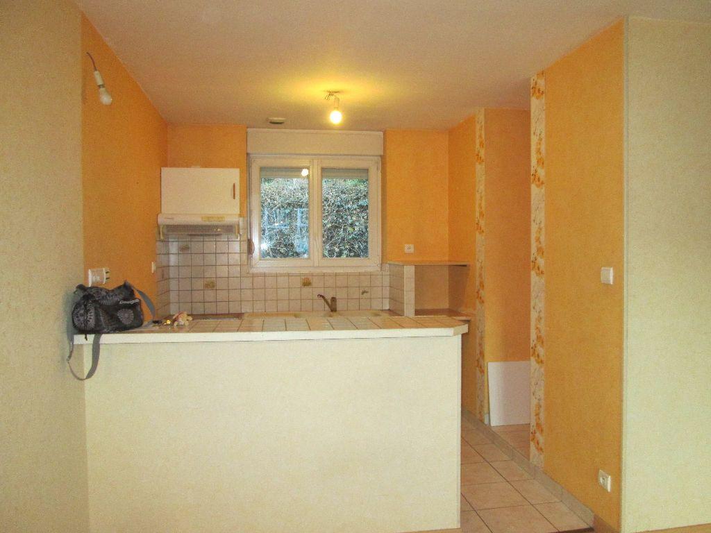 Appartement à louer 1 37m2 à Saint-Dié-des-Vosges vignette-2