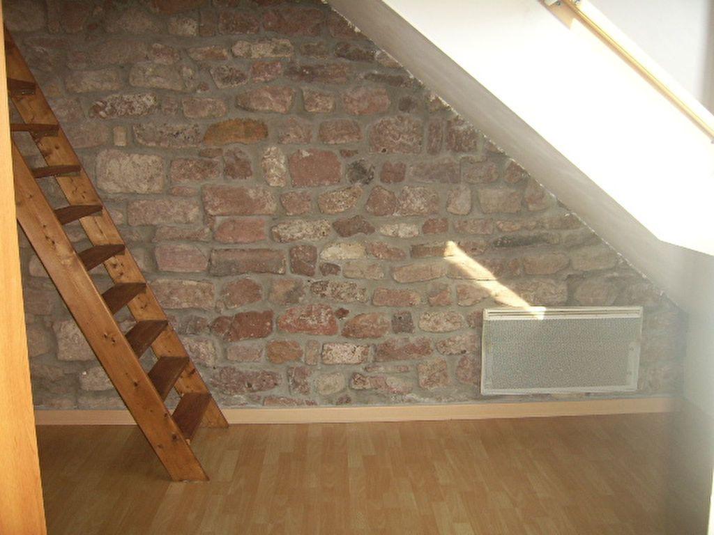 Appartement à louer 1 35m2 à Saint-Dié-des-Vosges vignette-5