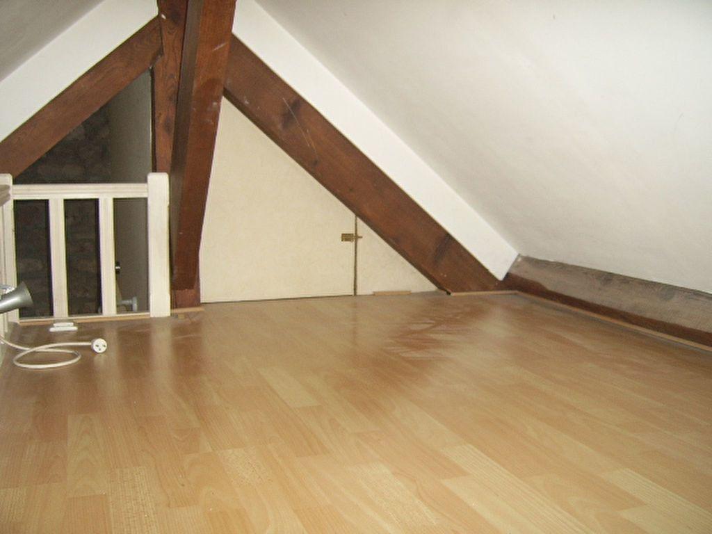 Appartement à louer 1 35m2 à Saint-Dié-des-Vosges vignette-7