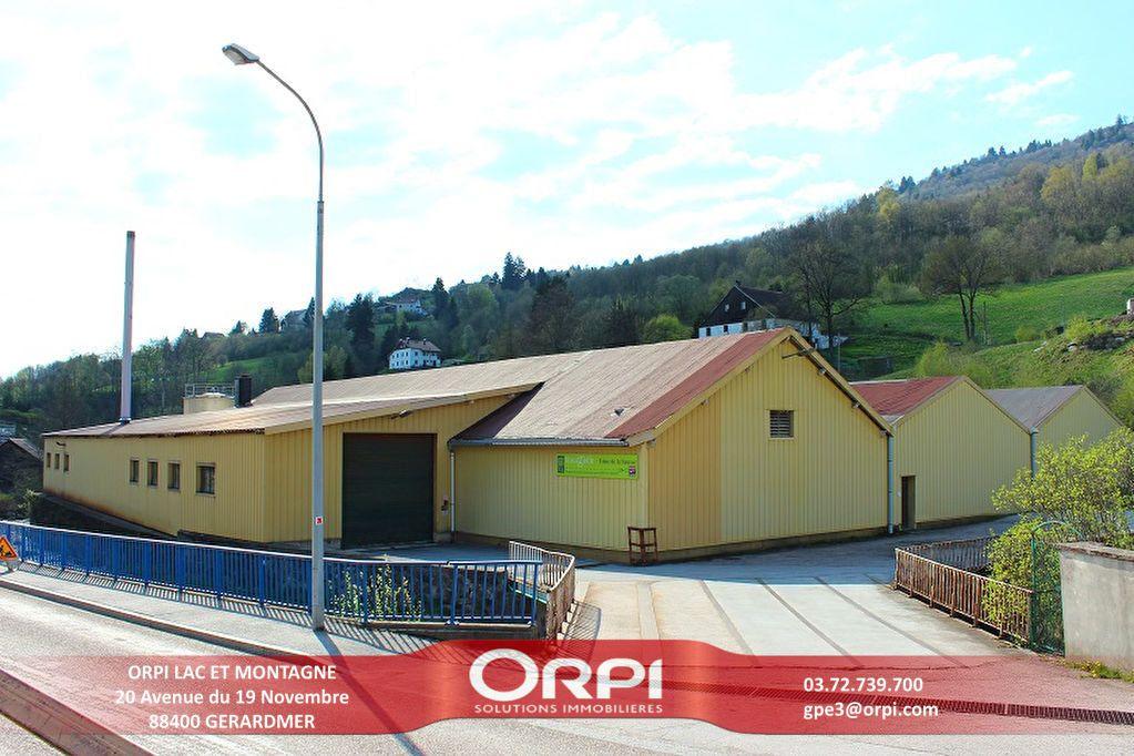 Immeuble à vendre 0 3441m2 à La Bresse vignette-1