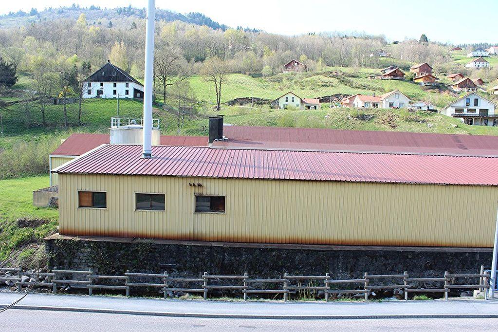 Immeuble à vendre 0 3441m2 à La Bresse vignette-6
