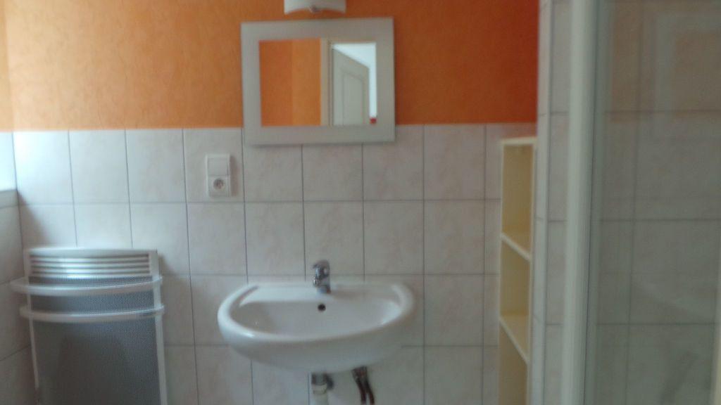 Appartement à louer 1 35m2 à Saint-Dié-des-Vosges vignette-6