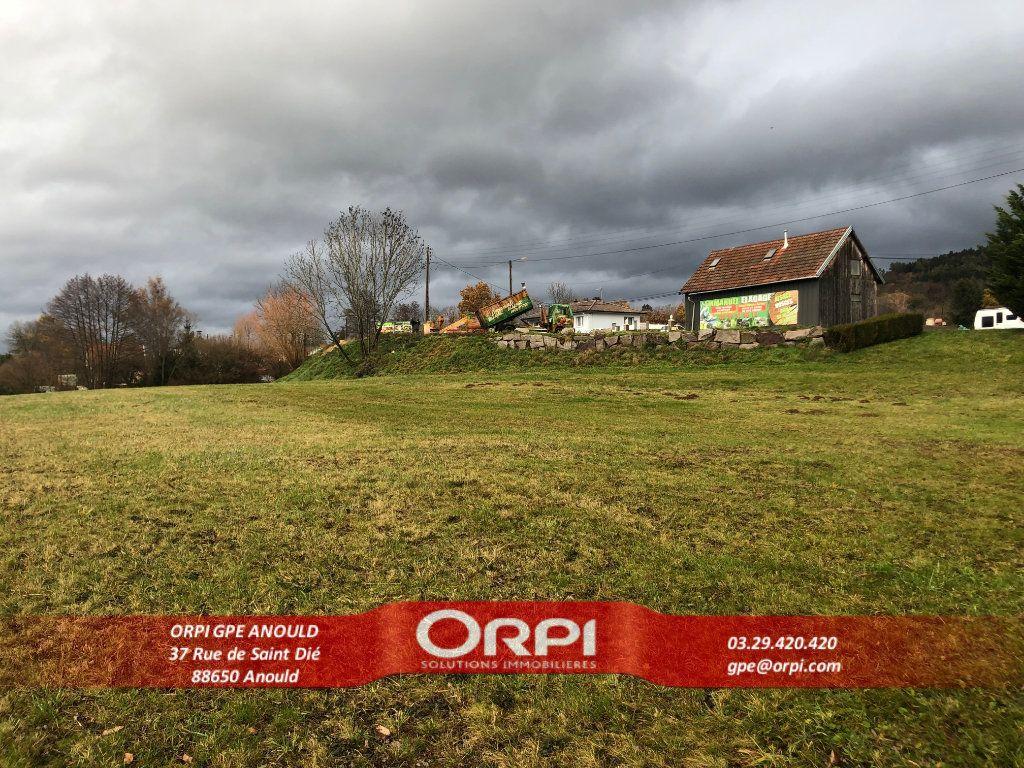 Maison à vendre 1 120m2 à Saint-Dié-des-Vosges vignette-9