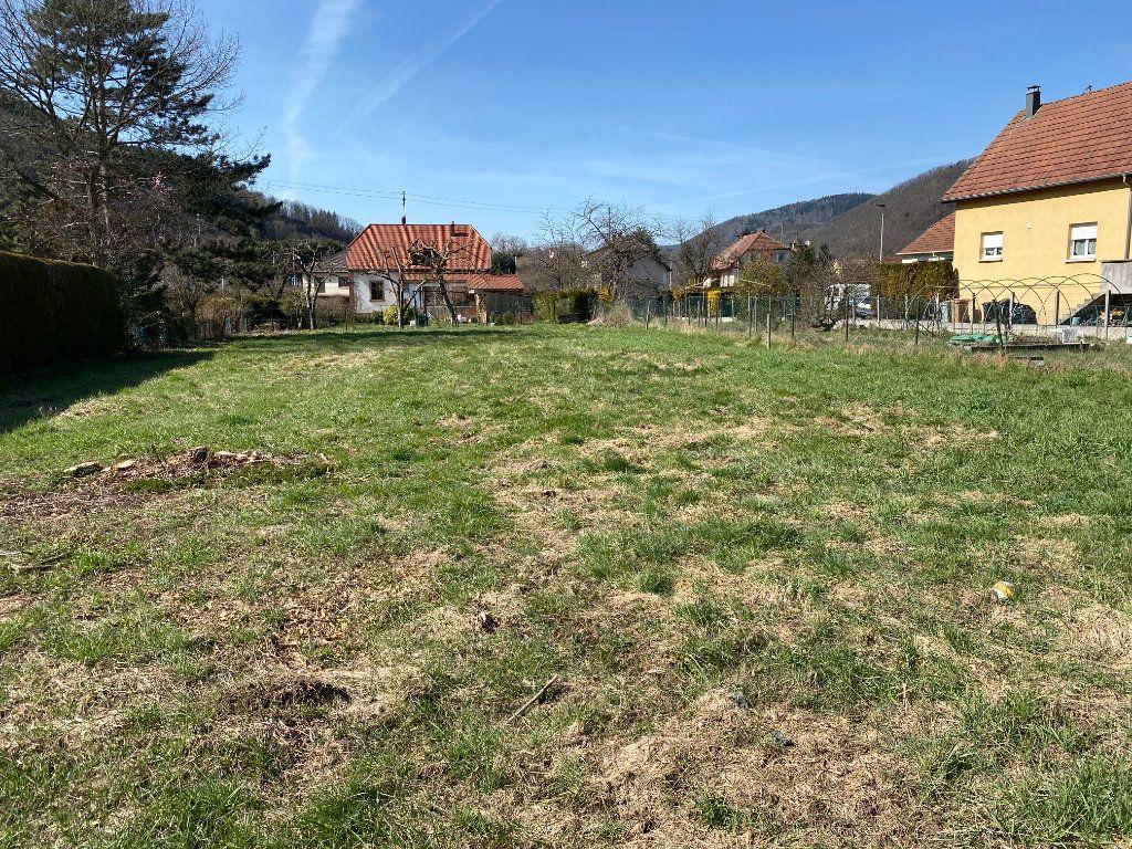 Terrain à vendre 0 1266m2 à Willer-sur-Thur vignette-2