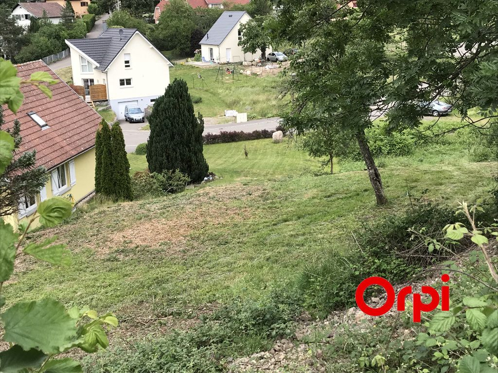 Terrain à vendre 0 552m2 à Oderen vignette-1