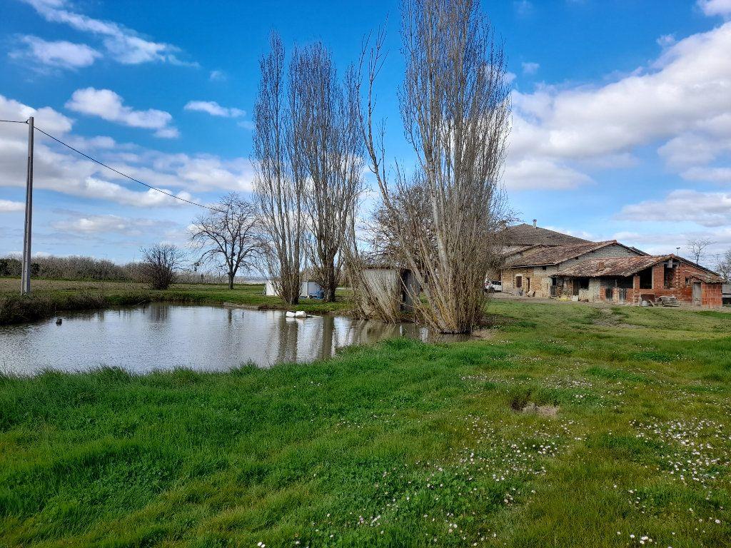 Maison à vendre 6 230m2 à Montbartier vignette-5